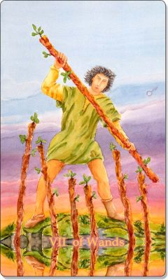 What is the meaning of VII of Wands Tarot Card?