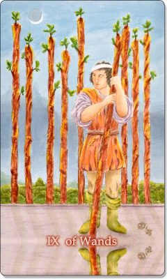 What is the meaning of IX of Wands Tarot Card?