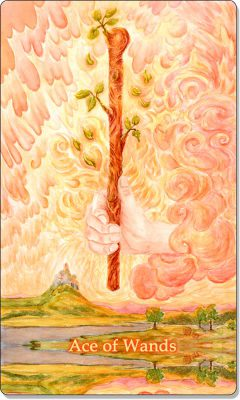 What is the meaning of the Ace of Wands Tarot Card?